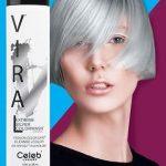 viral-silver-elizabeth-nicole-salon